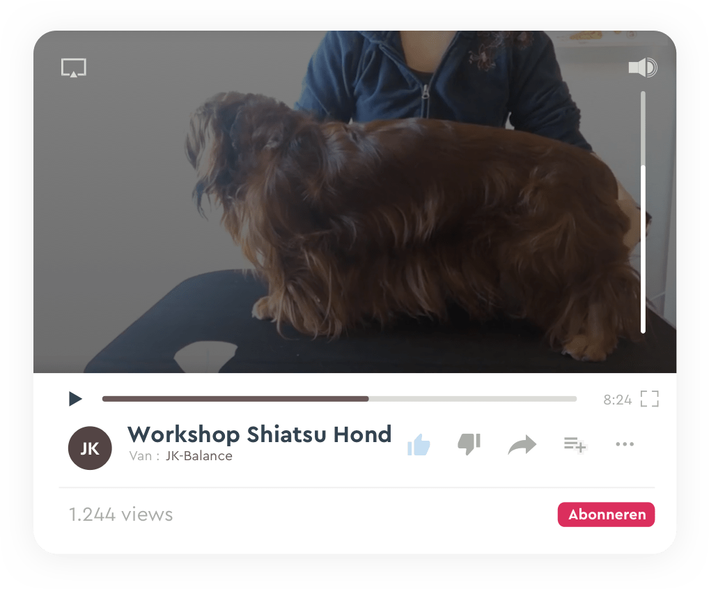 Online workshop Shiatsu Hond